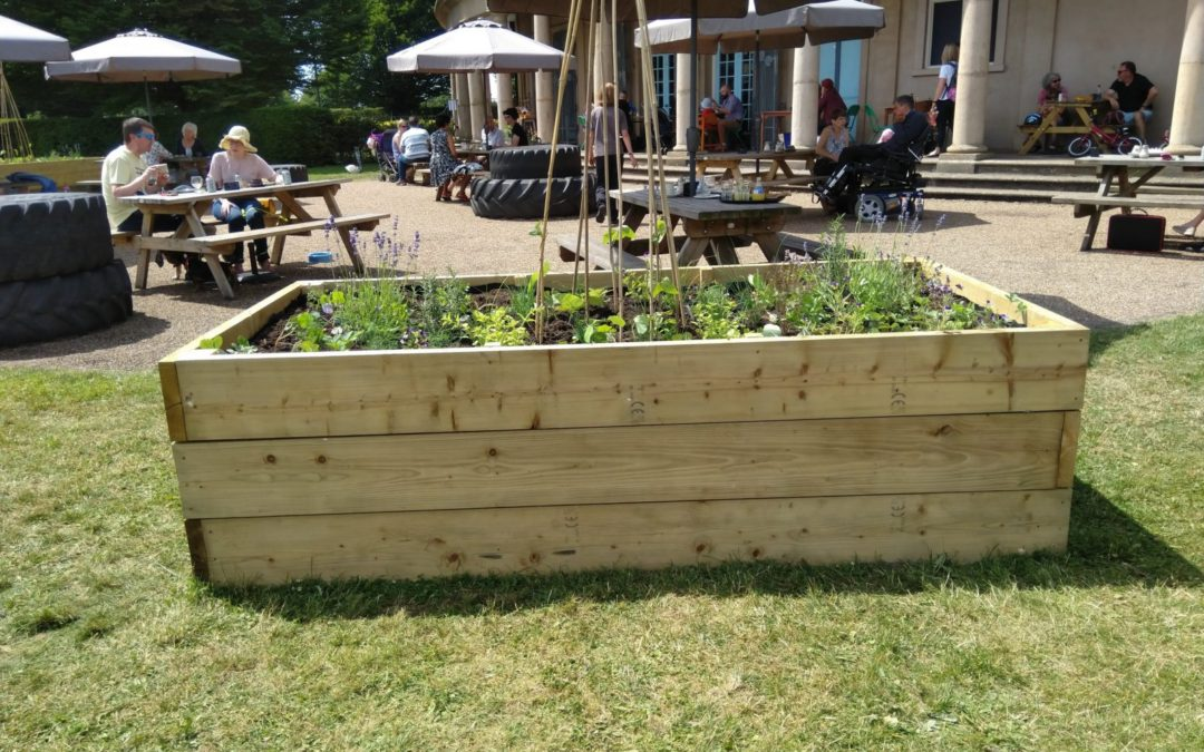 Community Herb Project